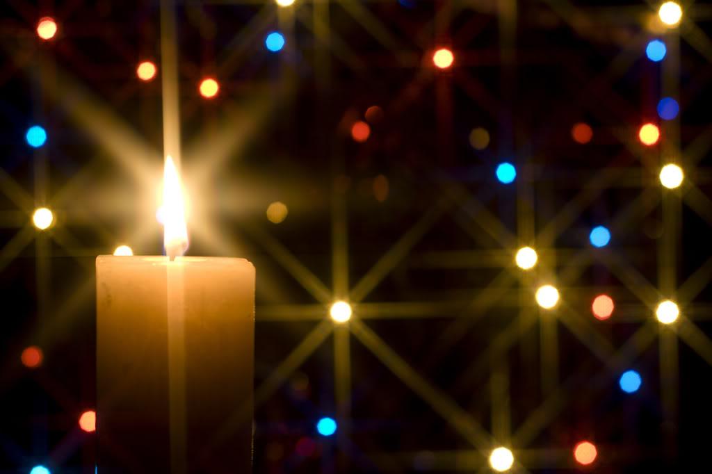 ever - Christmas Twinkle Lights